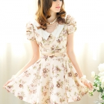 champagne printing bow skirt bubble short-sleeved dress