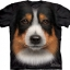 Big Face Australian Shepherd Dog T-Shirts thumbnail 1